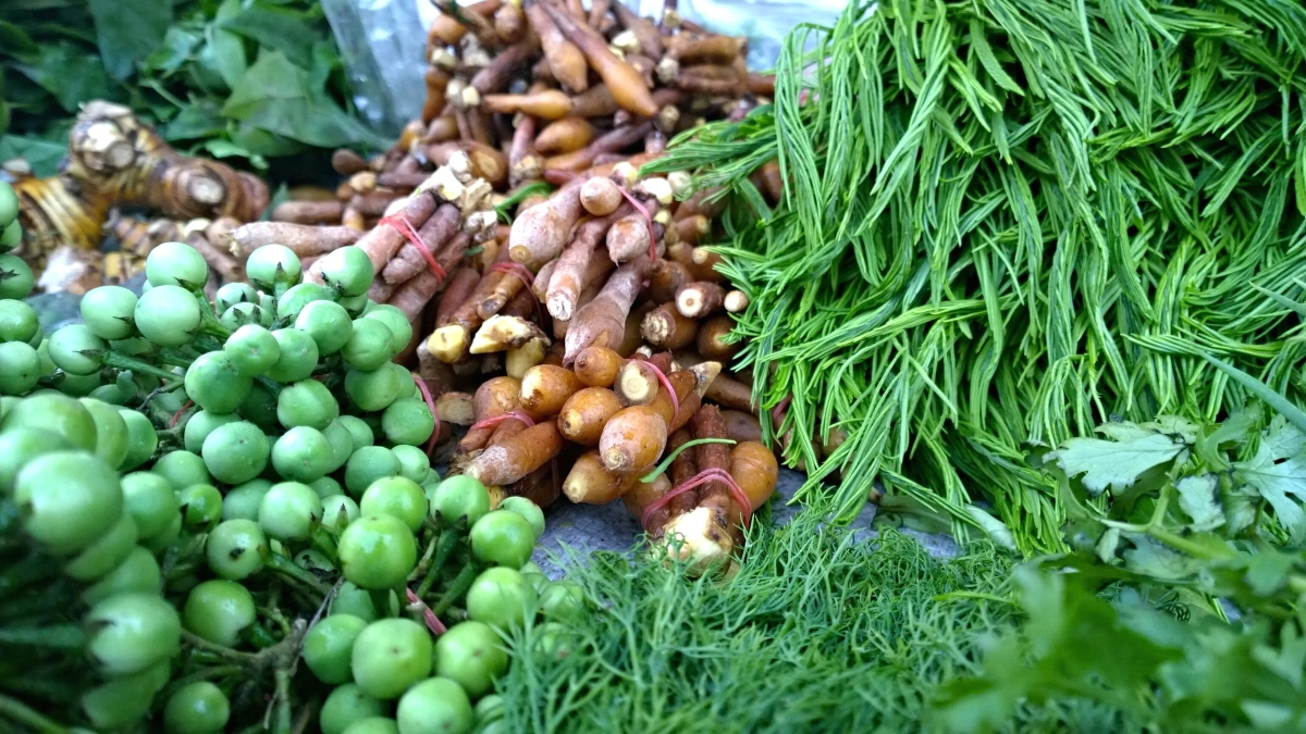Fresh Colours of Fresh Market